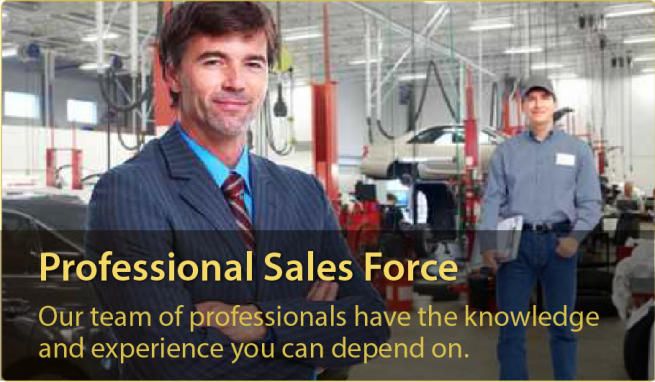 S-L Marketing - Professional Sales Force